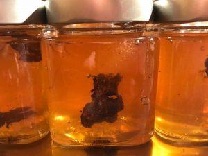 miel con trufa laminada de tòfona de la conca